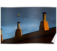 albuquerque rooftop Poster