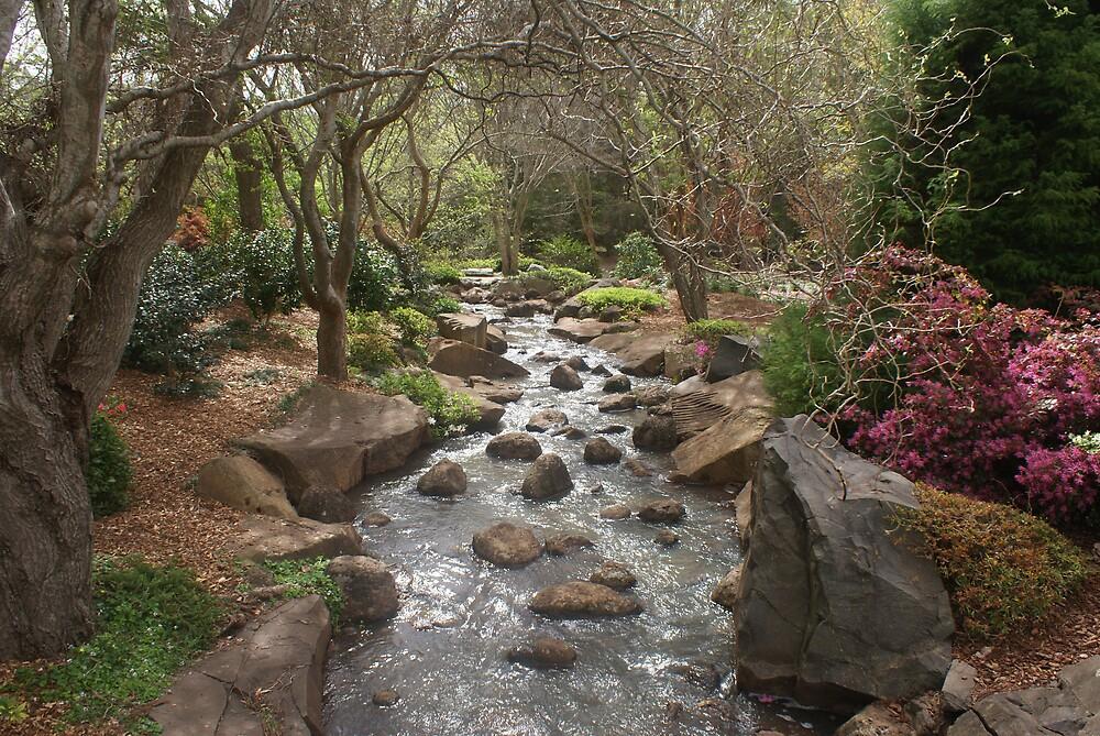 Garden Stream by Keith Smith