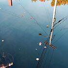 Harrisville reflected by Roslyn Lunetta