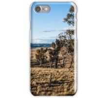 Landscape NSW iPhone Case/Skin