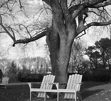 Adirondack Chairs Black & White by fotomonkey2