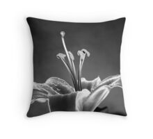 Never Give Up... Throw Pillow