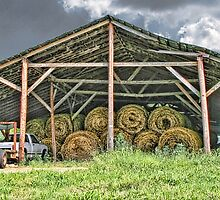 Hay Barn by Patricia Montgomery