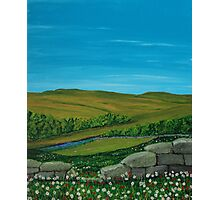 Flowery Landscape Photographic Print