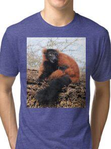 Shucks Tri-blend T-Shirt