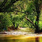 Jul's Creek of Peace by Roger Sampson