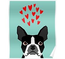 Boston Terrier - Hearts, Cute Funny Dog Cute Valentines Dog, Pet, Cute, Animal, Dog Love,  Poster