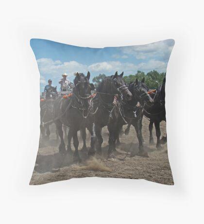 Black Percheron Eight Horse Hitch Throw Pillow
