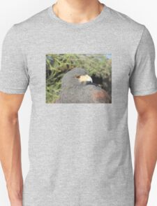 Harris Hawk Close-up T-Shirt
