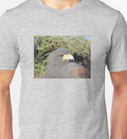 Harris Hawk Close-up Unisex T-Shirt