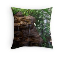 50D Trial shot  Throw Pillow
