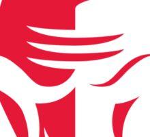 Chicago Bulls Sticker