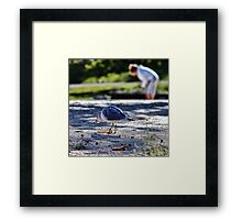The Bread Thief and the Rock Hound Framed Print