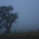 Adaminaby by Graham Schofield