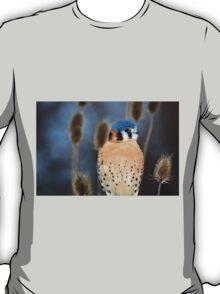 Adult Male American Kestrel Bird T-Shirt