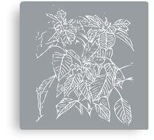 The Plant (grey) Canvas Print