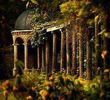 Secret Garden by Brian Canavan