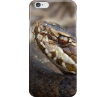 Water Moccasin iPhone Case/Skin