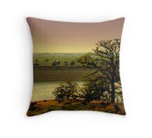 HIdden Valley Dam Throw Pillow