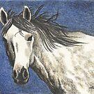 Freedom - Wild Horse by John Houle