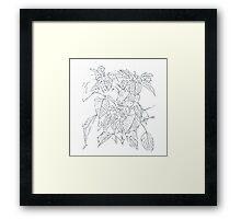 The Plant (white-grey) Framed Print