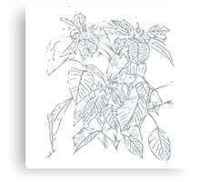 The Plant (white-grey) Canvas Print