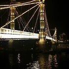 Albert Bridge, River Thames, London. by Colin  Williams Photography