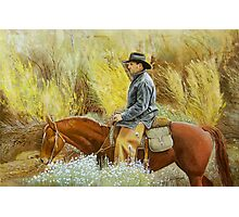Cowboy in the Mountain Long Sage Photographic Print