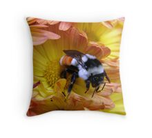 Color Coordinated Bumble Throw Pillow