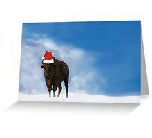 Buffalo Snow Greeting Card