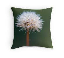 Morning comes... Throw Pillow