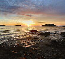 Bar Harbor Sunrise by Stephen Vecchiotti