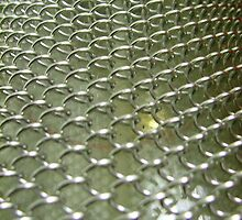 Tight Metal Mesh by LuxOfLight