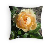 September Rose Throw Pillow