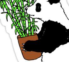 Panda Bamboo Takeaway Sticker