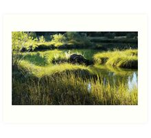 Spring Creek on an October Afternoon Art Print