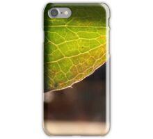 Leaf in translucency I iPhone Case/Skin