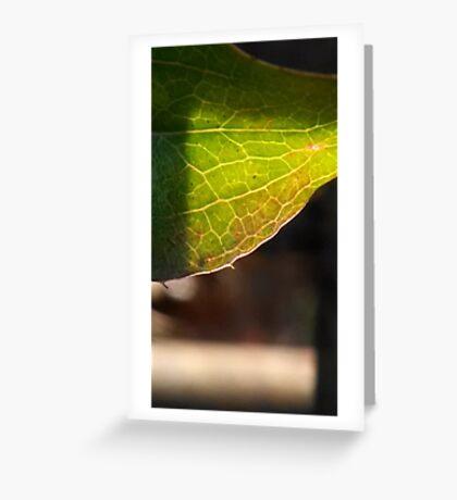 Leaf in translucency I Greeting Card