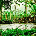 Waipio Valley by lilestduncan