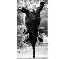 Nimble Elephant Photographic Print