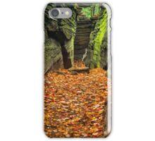 Hidden Passageway iPhone Case/Skin
