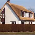 My House -new thatched roof by Gilberte