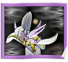 Iris In The Sky Poster
