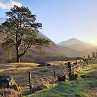 Glen Nevis Glow by Cat Perkinton