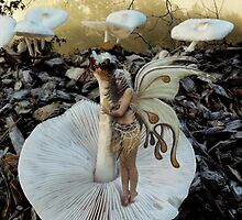 Flipped Shroom Fairy by DALE CRUM