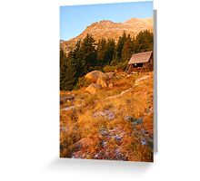 Timerbline Lodge, Pike's Peak, CO 2008 Greeting Card