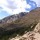 Barr Trail, Timberline, Pike's Peak, CO 2008 by J.D. Grubb