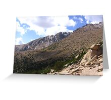 Barr Trail, Timberline, Pike's Peak, CO 2008 Greeting Card