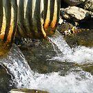 Water by lilestduncan