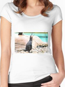 Penguin calling ! Women's Fitted Scoop T-Shirt